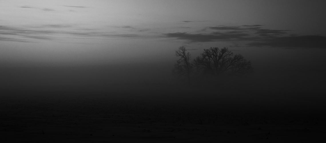 Düstere neblige Landschaft